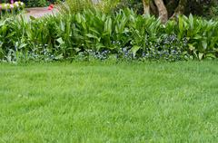 Green lawn with a flower bed border Stock Photos