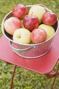 Fresh apples in a metal bowl on a garden table - stock photo