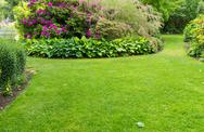 Stock Photo of lawn with flower garden