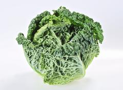 A savoy cabbage - stock photo