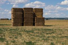 large stack of hay bales under cloud studded sky - stock photo