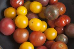 Colorful Mini Heirloom Tomatoes - stock photo