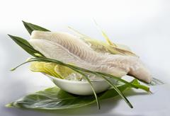 Fresh Pangasius fillets Stock Photos