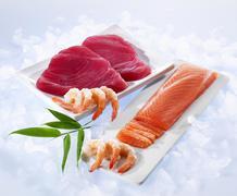 Tuna fish fillets, salmon fillets and shrimp Stock Photos