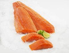 Salmon fillet on ice Stock Photos