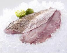 Stock Photo of Red Snapper fillets