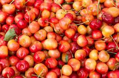 Queen anne cherries Stock Photos