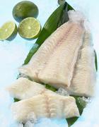 Stock Photo of Fresh Wolffish fillets