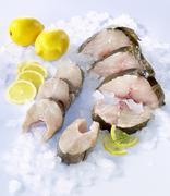 Fresh cod and haddock steaks Stock Photos