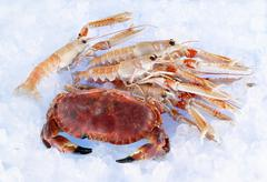 Whole crab and lobster on ice - stock photo