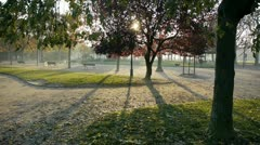 View of a park near the eiffel tower Stock Footage