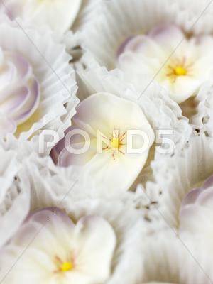 Stock photo of Sugar orchids for decorating cakes