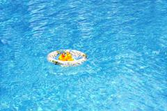 A rubber duck in a rubber ring in a swimming pool - stock photo