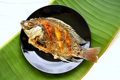 Fried tilapia (Thailand) Stock Photos