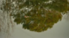Lake reflection Stock Footage