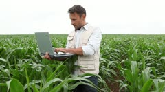 agronomist analysing cereals with laptop computer - stock footage