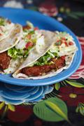 Plate of Fried Fish Tacos - stock photo