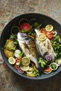 Dorade Fish Cooked in a Skillet with Tomatoes, Lemons and Parsley Stock Photos
