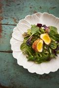 Fried Poached Egg Over Mixed Greens - stock photo