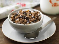 Bowl of Chocolate Muesli; On a Plate with a Spoon Stock Photos