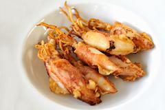 Fried cuttlefish - stock photo