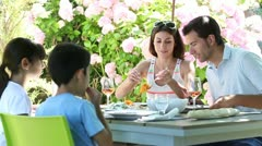 Family having barbecue lunch in garden Stock Footage