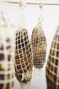 Coppa Pork Hanging in Curing Room - stock photo