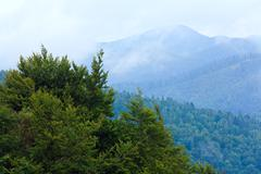 cloudy morning in mountain - stock photo