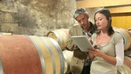 Stock Video Footage of winemakers in cellar using electronic tablet