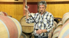 winemaker getting sample of red wine from barrel - stock footage