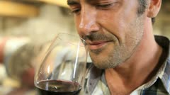 closeup on winemaker smelling red wine in glass - stock footage