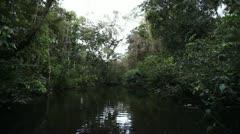 0044-Amazon Jungle River Dark Dense Noise Stock Footage