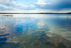 summer rushy lake - stock photo