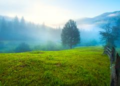 hazy daybreak in mountain valley - stock photo