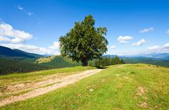 Summer mountain landscape Stock Photos