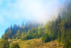 hazy morning in mountain - stock photo