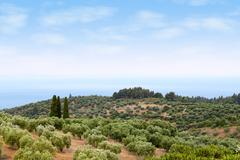halkidiki landscape.JPG - stock photo