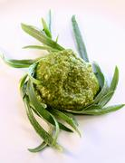 A blob of pesto with fresh tarragon Stock Photos