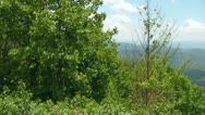 Pan Across the Blue Ridge Mountains with Looking Glass Rock in Background Stock Footage