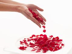 Bathing hands in a bowl of water with rose petals Stock Photos