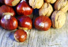 Assortment of nuts displayed on wood background Stock Photos