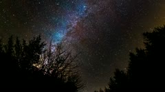 Milky Way over Forest Stock Footage