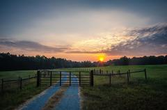 country road at sunrise - stock photo