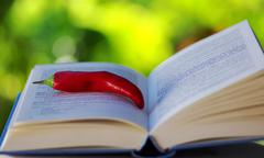 Red hot chili pepper on open book Stock Photos