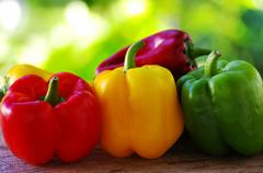 Red, yellow and green pepper on green background Stock Photos