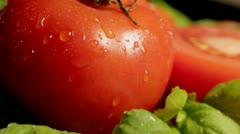 Tomatoes and Basil - stock footage
