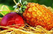 Stock Photo of raw tropical fruits, pineapple and mango