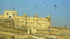 Amber fort Stock Footage