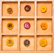 Stock Photo of shadow box with bright straw flowers