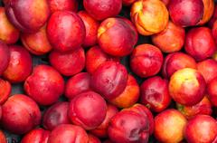 Ripe red nectarines for sale at the market Stock Photos